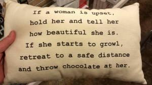 cushion the blow